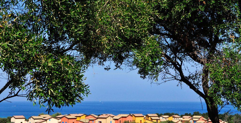 Bon séjour en Corse !