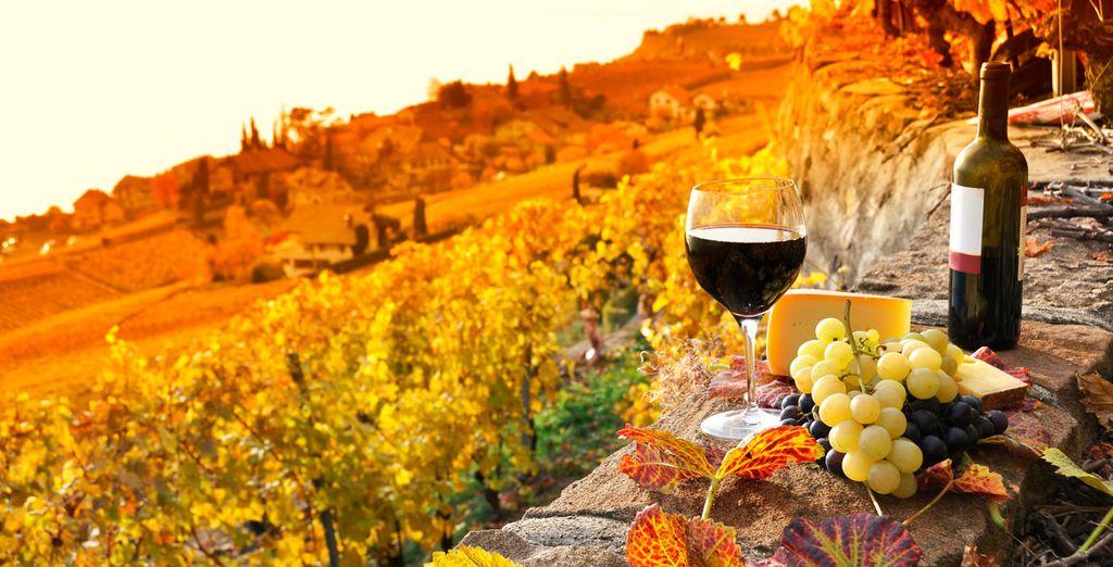 A votre arrivée, vous serez accueilli avec une bouteille de vin