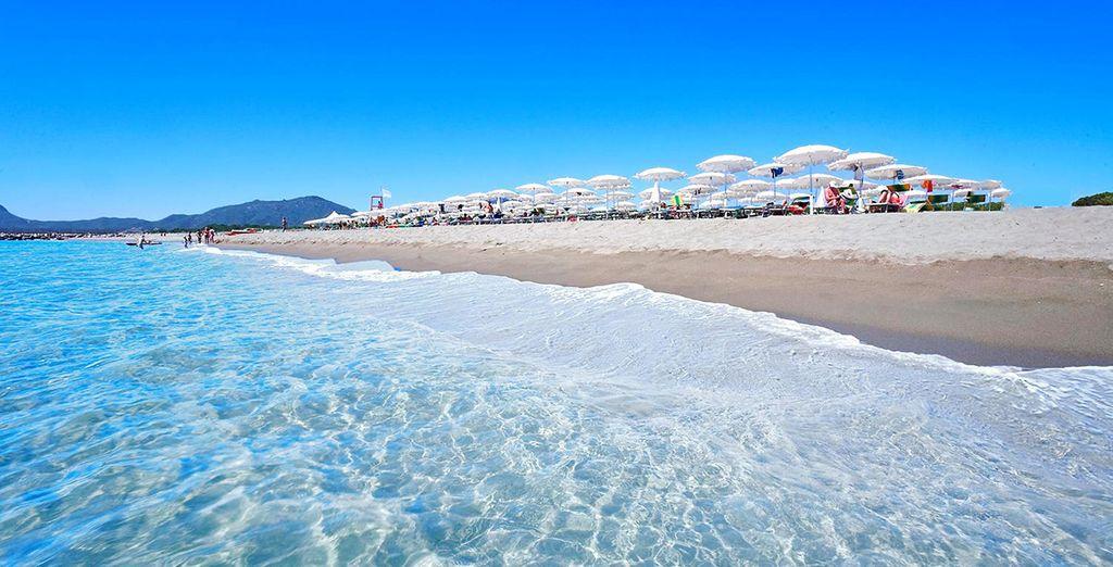 Que diriez-vous de vacances au soleil totalement sereines ?