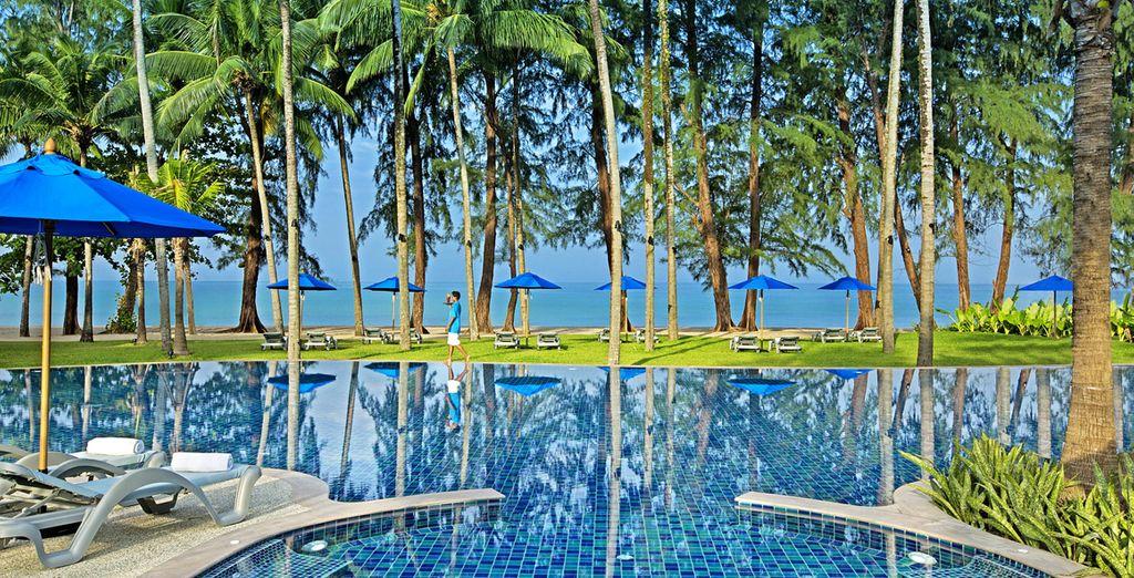 Imaginez-vous au bord d'une magnifique piscine...