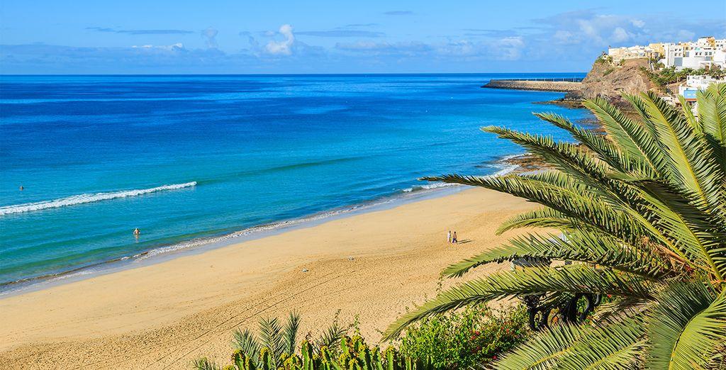 Et les sublimes plages de Fuerteventura !