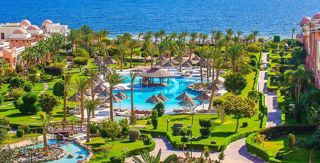 Et si vous vous envoliez pour l'Egypte ? - Serenity Makadi Beach 5* et combiné croisière Rêverie du Nil 5* Hurghada