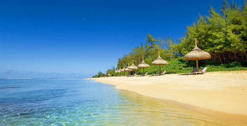 Au bord d'une plage de sable fin...