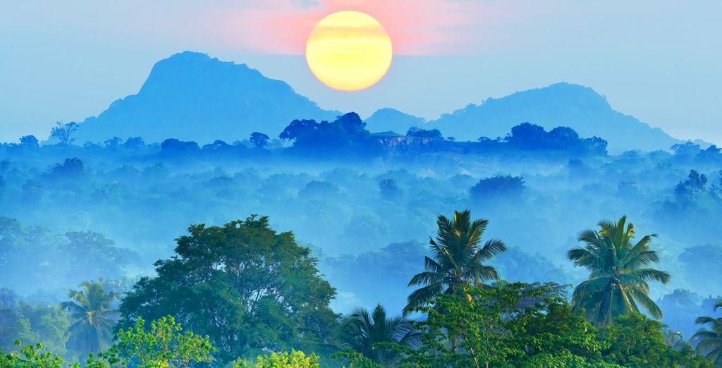 N'attendez plus pour découvrir le Sri Lanka en version luxe !