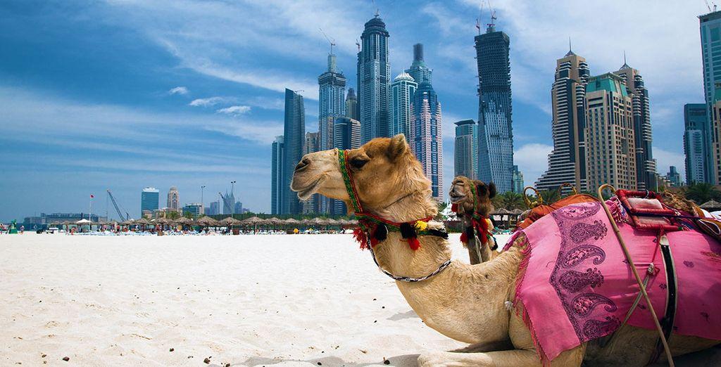 Prêt à passer un séjour de rêve à Dubaï ?