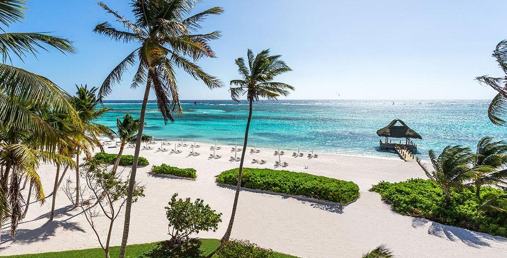 Oubliez ce que vous savez sur Punta Cana... Voici une pépite !