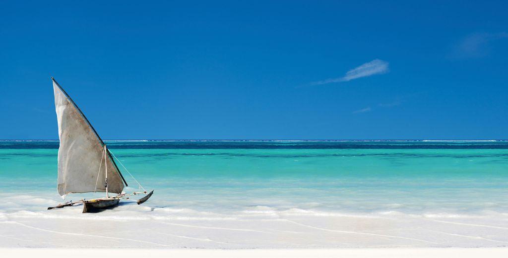 Revenez émerveillé de vos vacances à Zanzibar !