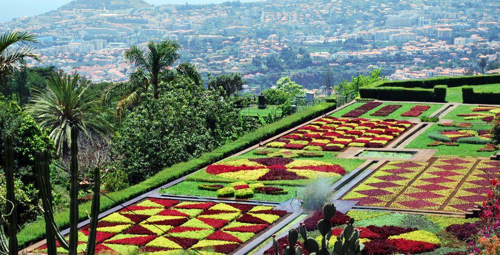 Profitez de ses jardins aux mille couleurs