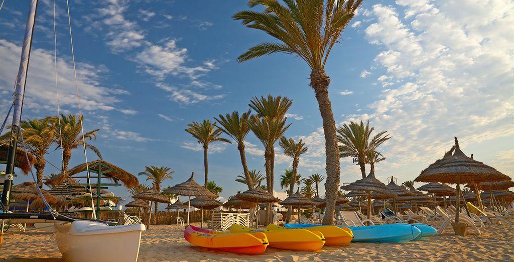 Découvrez des plages paradisiaques...