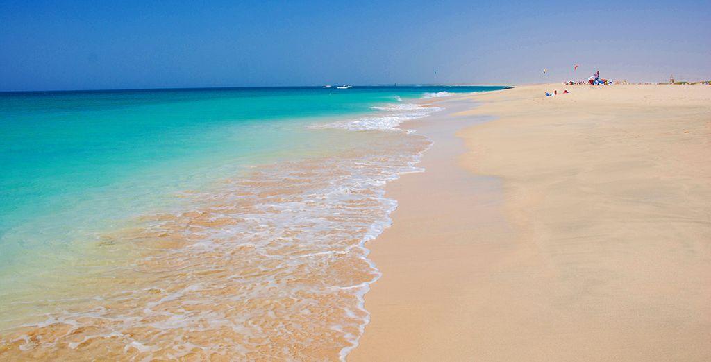 Et des plages de rêves vous attendent