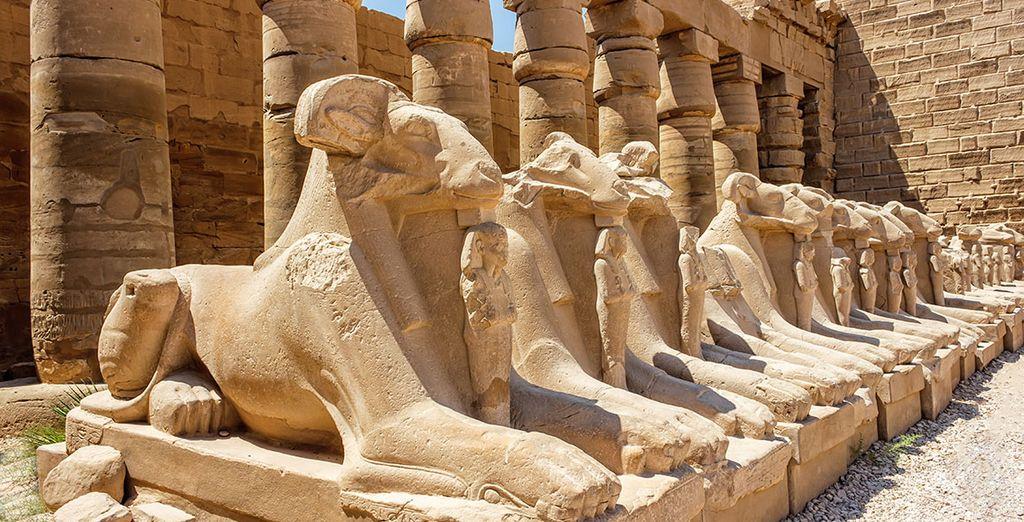 Et grâce aux excursions en option, restez sans voix devant les temples de Karnak