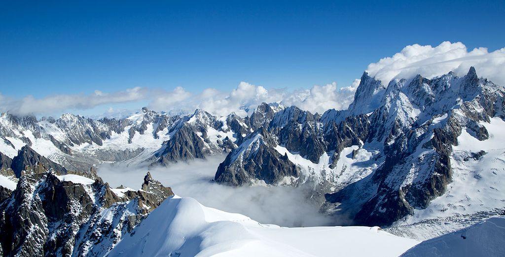 Découvrez une nature splendide sous son manteau de neige
