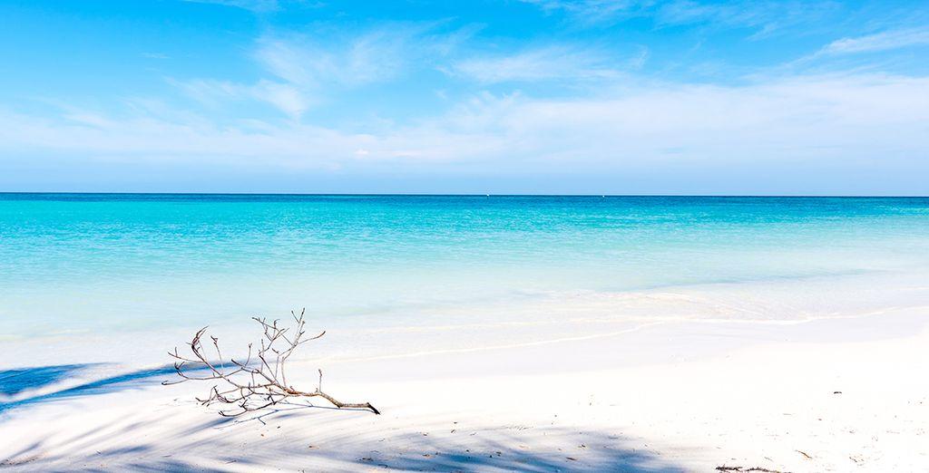 Ou préférez la vie de Robinson sur l'île paradisiaque de Cayo Leviso