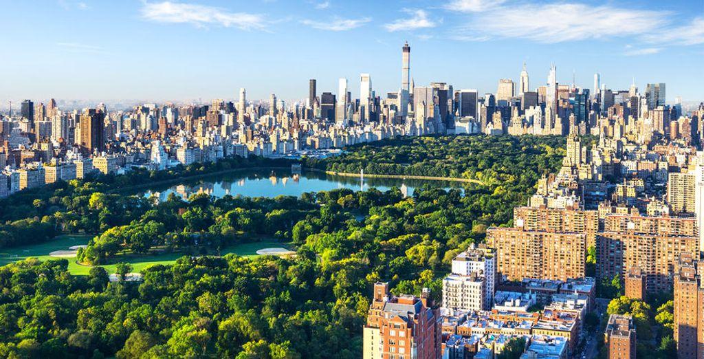 À Central Park, par exemple