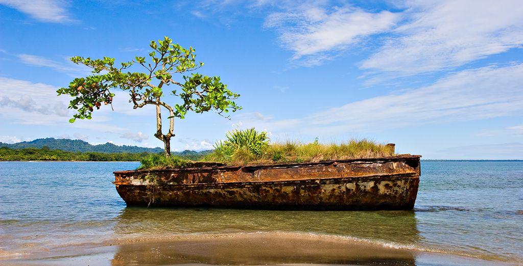 Votre voyage au Costa Rica restera un souvenir magique !
