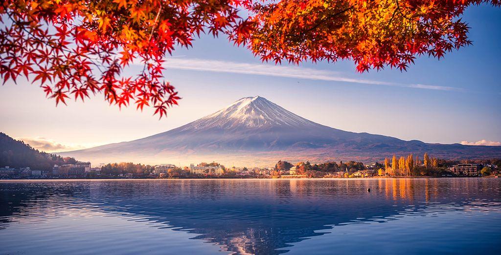Circuit 3* ou 4* Beautés hivernales du Japon - 7 à 14 nuits