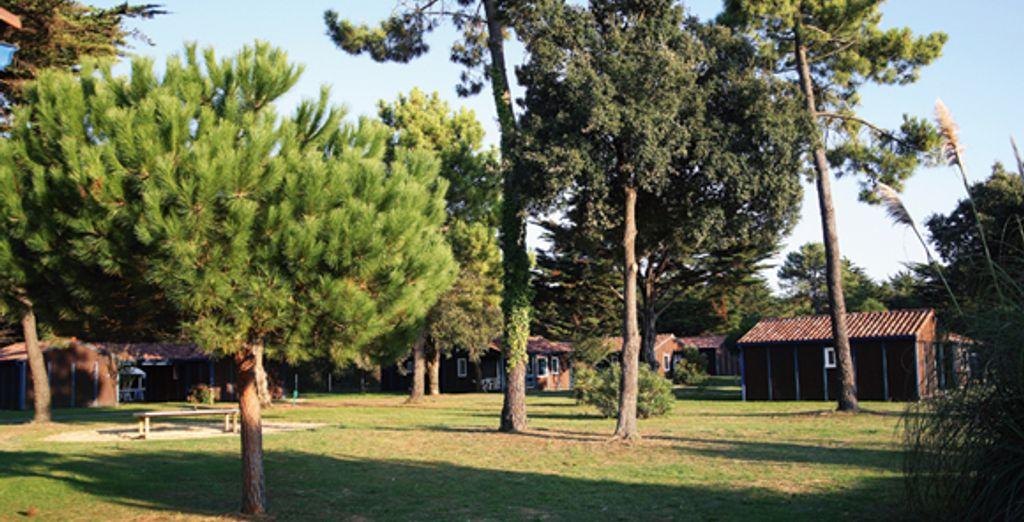 Les jardins de l'établissement - Club Belambra St Martin Ile de Ré