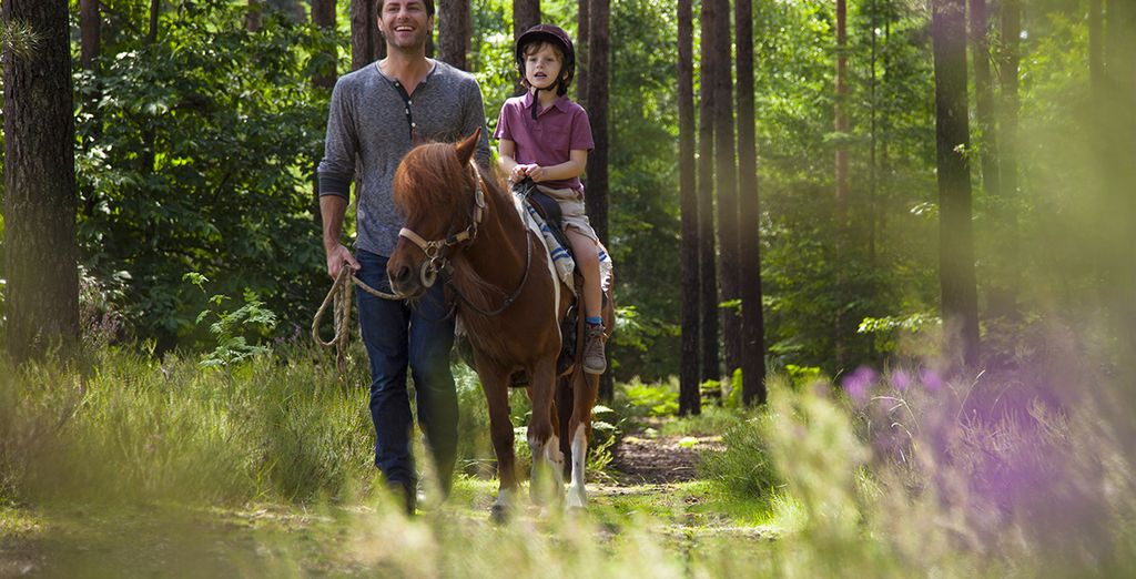 Balade à cheval au Center Parcs Domaine du Bois aux Daims