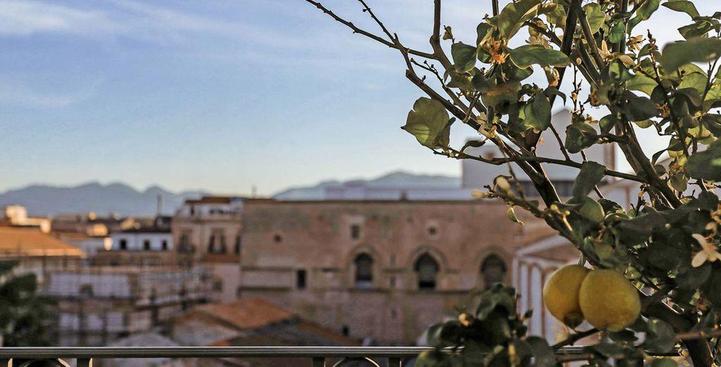 Perdez-vous dans les magnifiques panoramas offerts par le toit-terrasse