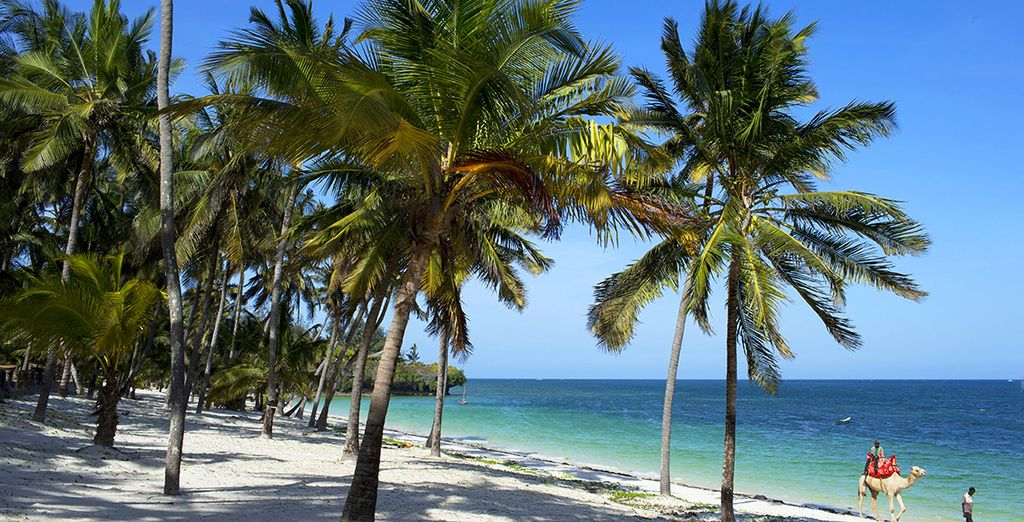 Bienvenue au Southern Palms Beach Resort !
