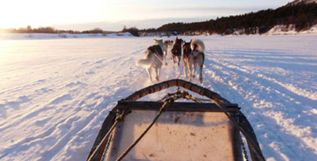 - Séjours multi-activités hiver au Canada  :