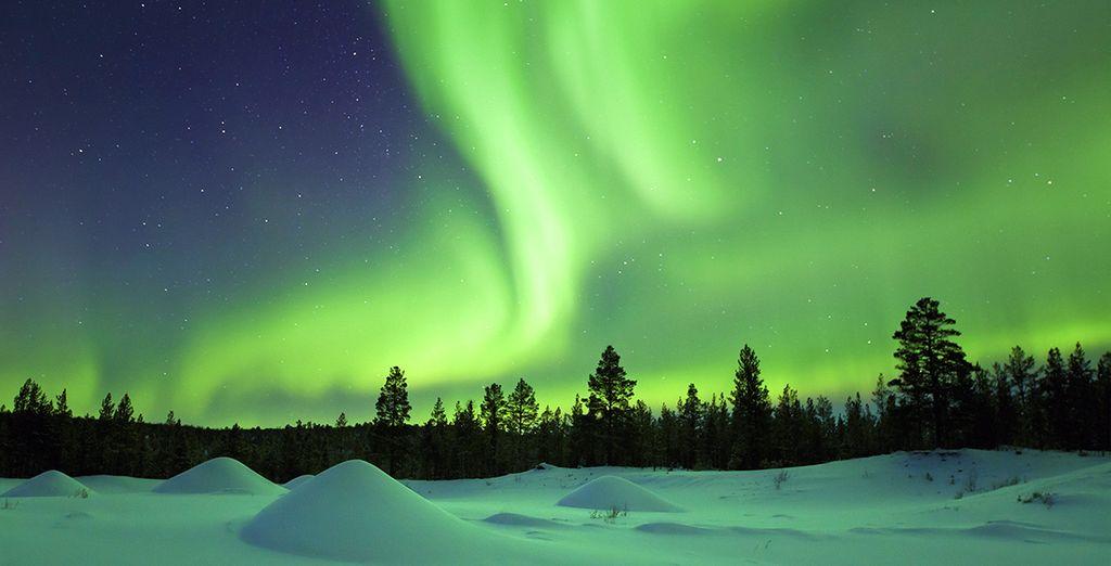 Aurores Boréales, ski et balade en chiens de traîneau en Finlande - 6 jours /5 nuits ou 8 jours /7 nuits
