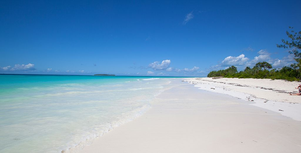 Bienvenue sur l'archipel de Zanzibar, dans un cadre époustouflant