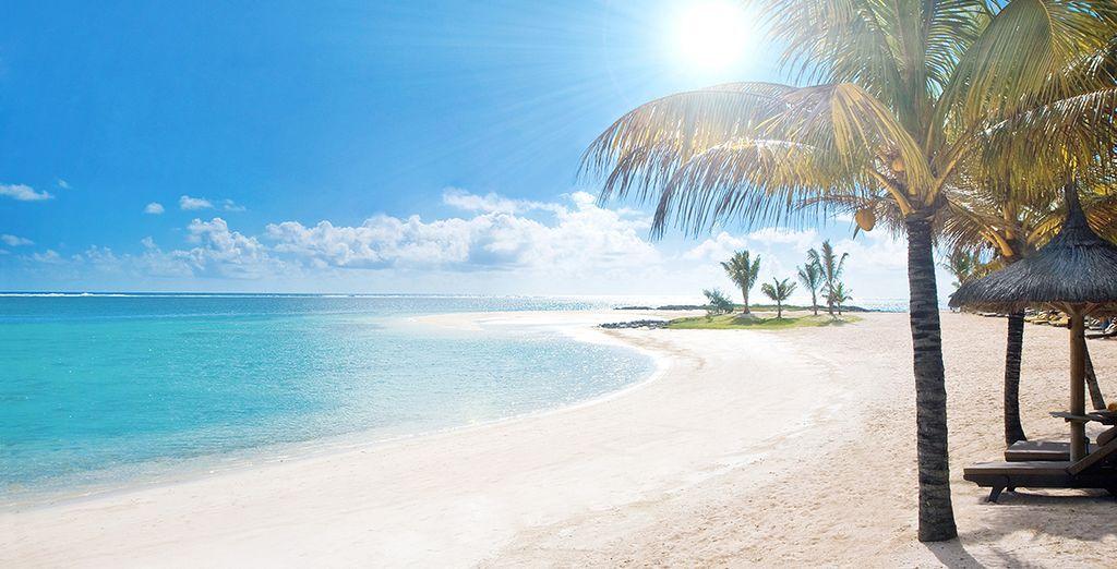 Photographie des plages paradisiaques de l'Île Maurice et leurs eaux turquoise