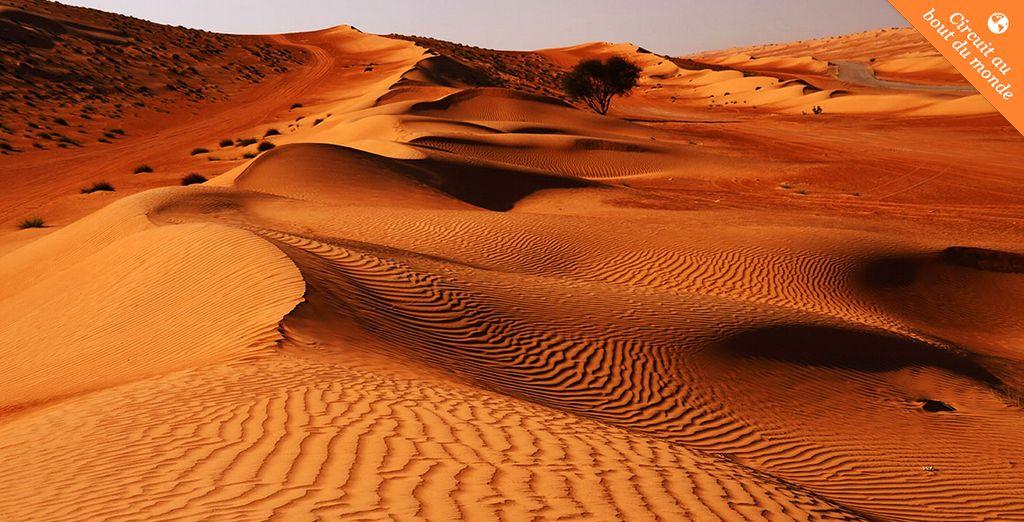 C'est parti pour un extraordinaire voyage ! - Circuit  Oman 8 jours et 6 nuits & Circuit  Oman - Abu Dhabi - Dubaï 11 jours et 9 nuits Mascate