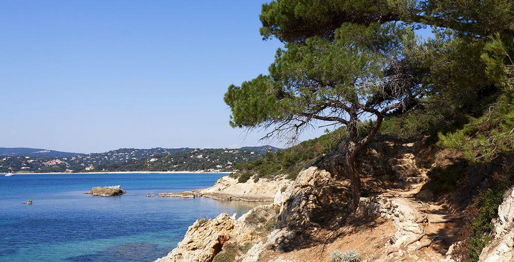 La côte d'Azur a beaucoup à vous offrir !