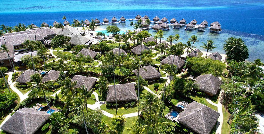 En passant par le Moorea Pearl Resort 4*