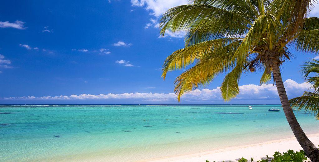 Organisez un voyage inoubliable pour vos vacances de juillet avec Voyage Privé