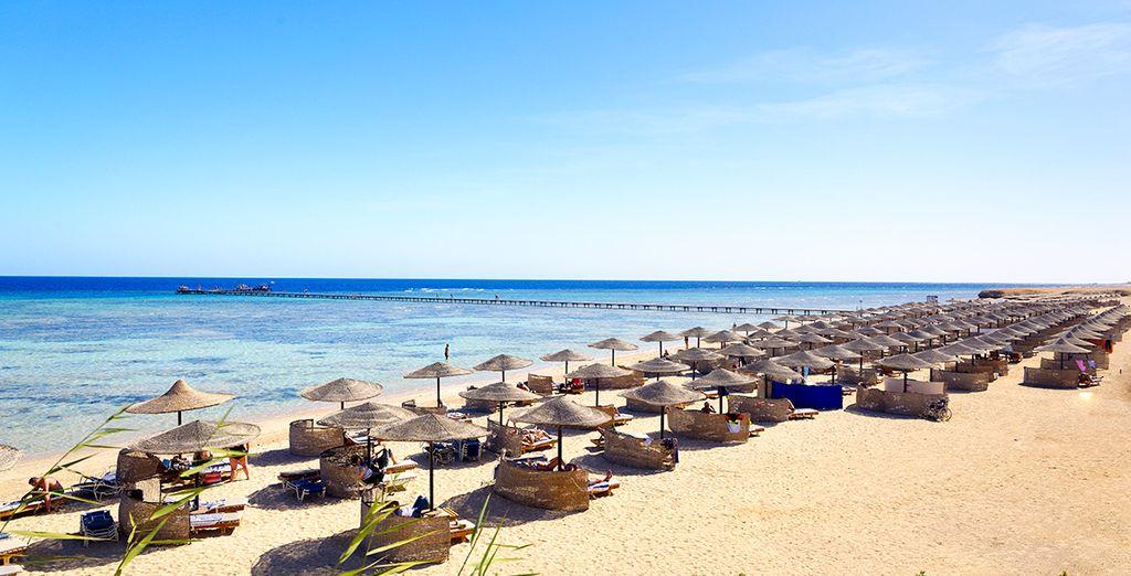 Prenez la direction de l'Egypte pour vos prochaines vacances