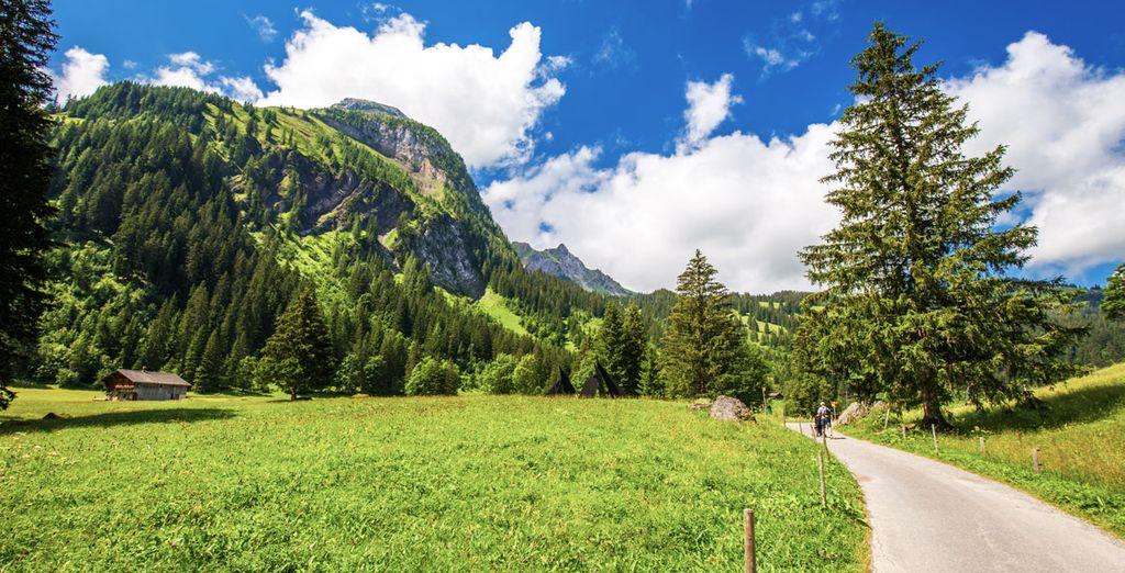 Paysages montagneux de Suisse