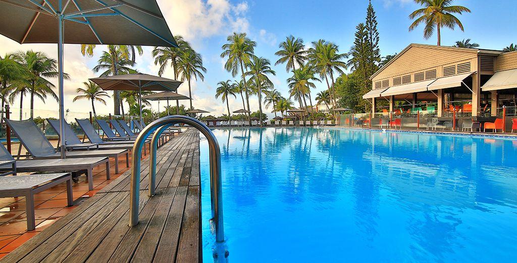 Envie de vous relaxer dans un petit coin de paradis ?