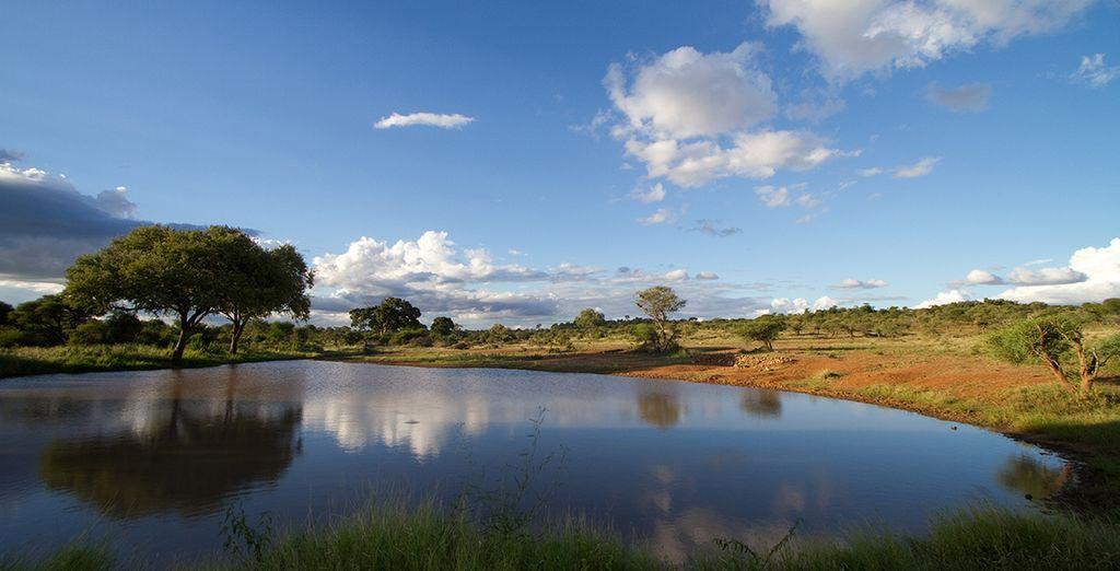 En passant par le Parc Kruger