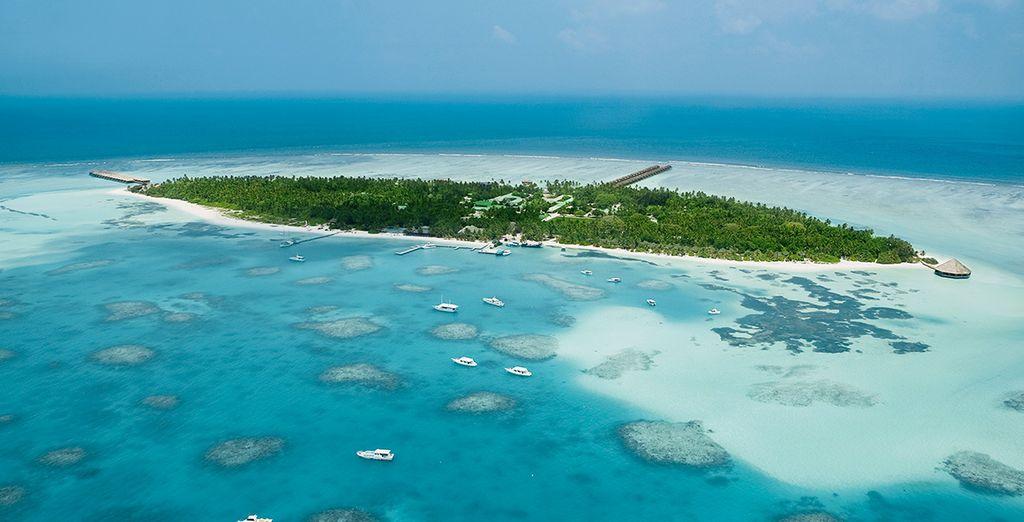 Découvrez le véritable paradis - Meeru Island Resort & Spa **** Malé