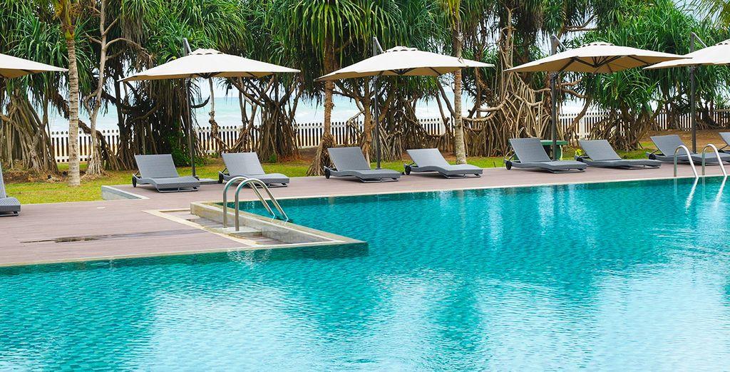 Profitez du généreux climat en bronzant au bord de la piscine
