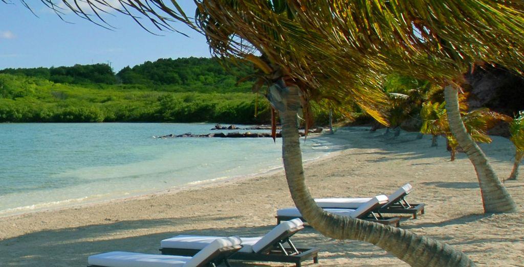 Profitez du calme de la plage privée