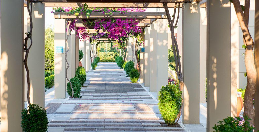 Parcourez les  allées fleuries du jardin