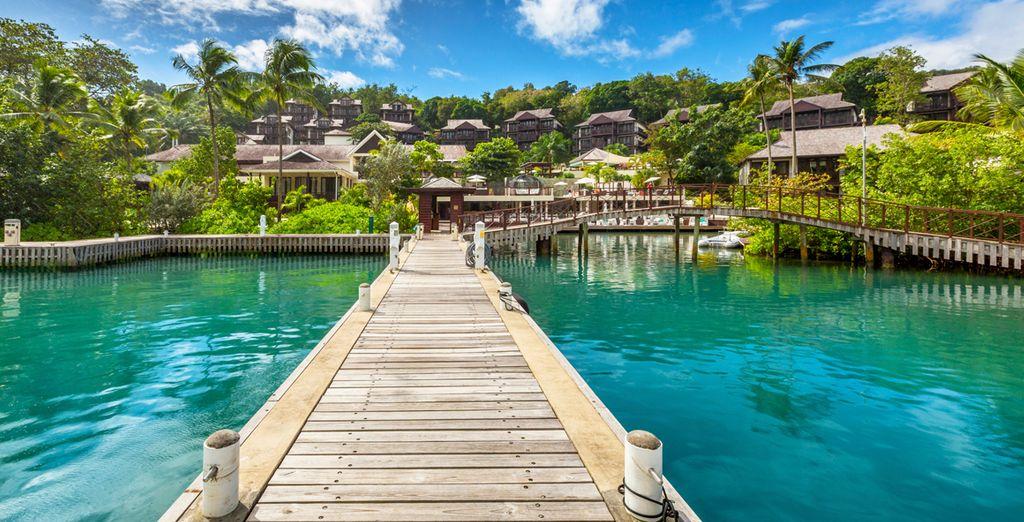 Fotografia dell'isola di Santa Lucia e dei suoi paesaggi verdi