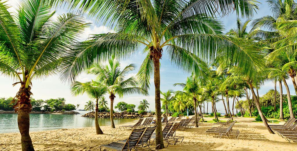 Fotografia sulle bellissime spiagge intorno a Singapore