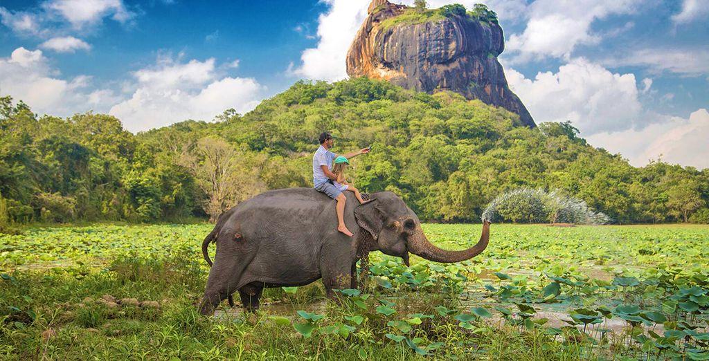Soggiorno Mare Sri Lanka : Minitour e soggiorno mare in sri lanka voyage privé fino