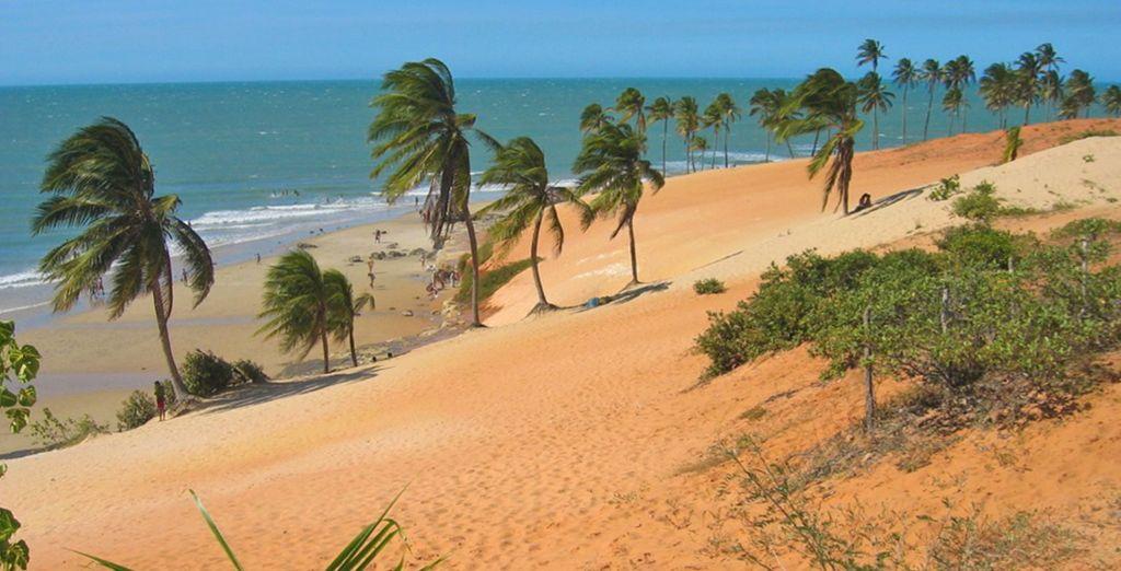 Dove rimarrete affascinati dalle sue spiagge