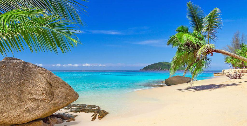 Scegliete un paradiso tropicale, partite per Phuket!