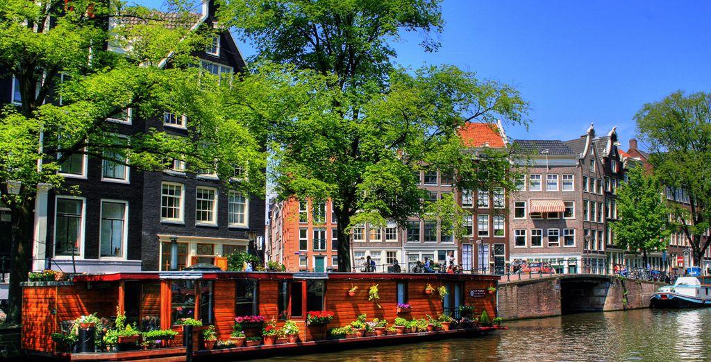 Perdetevi tra luci e colori della capitale olandese