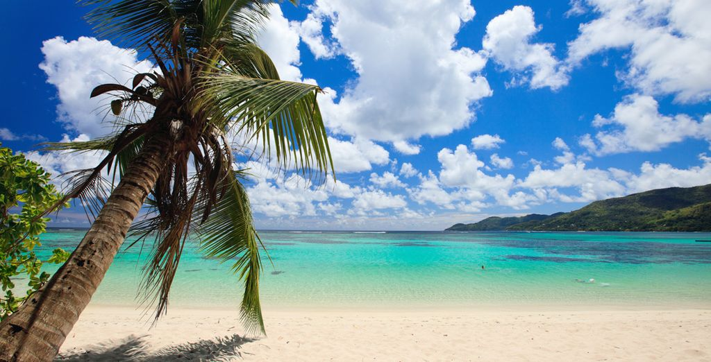 Seychelles, sogno che diventa realtà