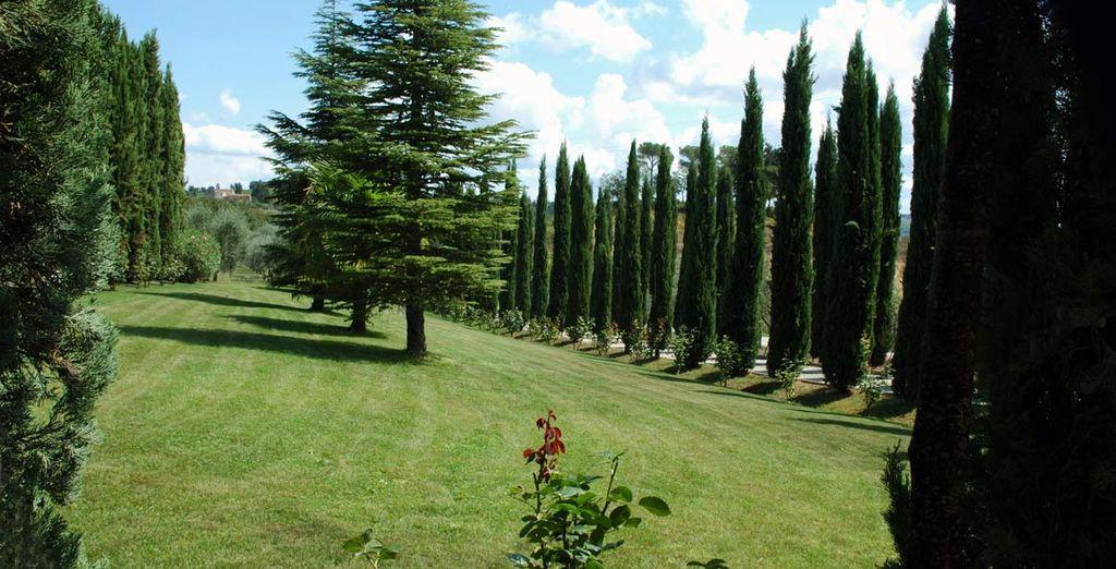 e da alti cipressi, prestigiose vigne ed olivi