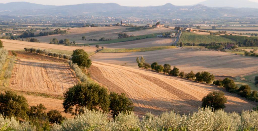 La suggestiva campagna Toscana vi attende