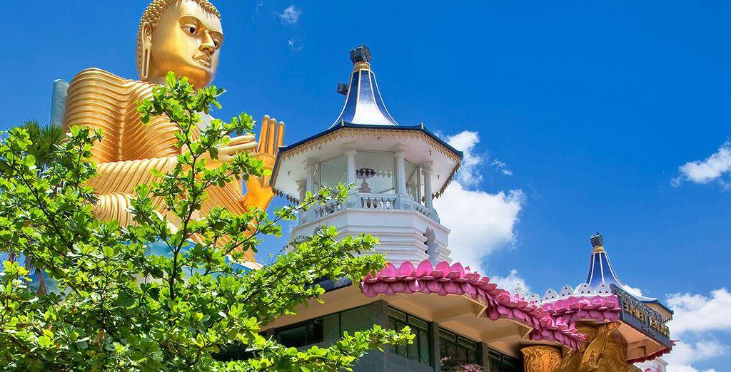 Partite per uno splendido Tour alla scoperta dello Sri Lanka